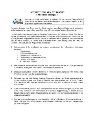 Document : Instructions (Allophone unilingue)